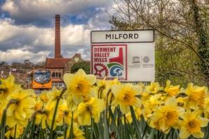 Milford - Spring 002